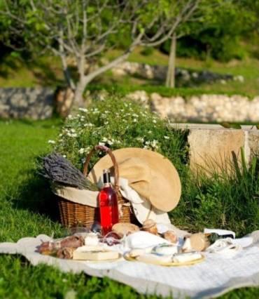 Disfrutar de un buen picnic